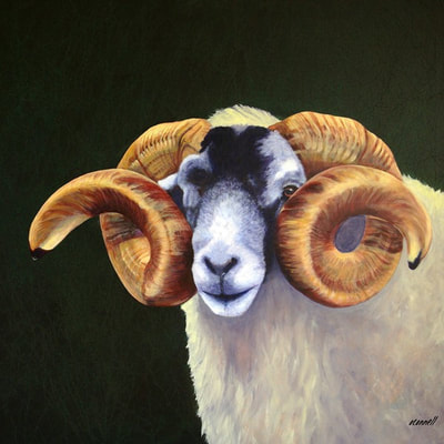 realistic sheep painting